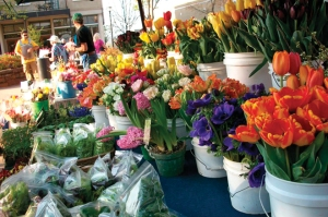 flowers-at-the-fayetteville-farmers-market