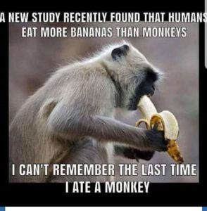 eastingBananasAndMonkeys